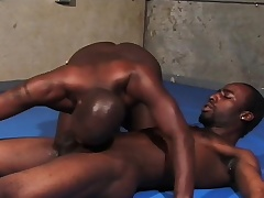Black cheerful wrestlers working their sweet lips surpassing each other's big rods